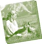 Tagebuch einer Gänsemutter