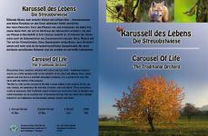 DVD-Inlay Karussell des Lebens
